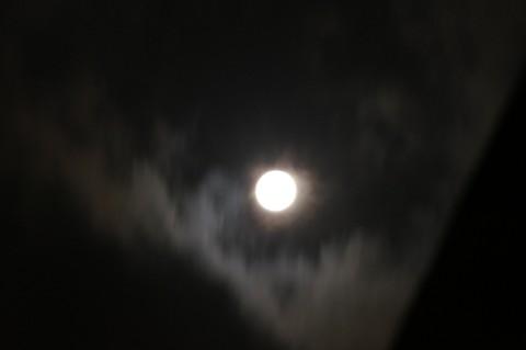 名月を覆う雲