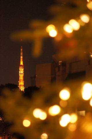 東京タワーをフレーミングするクリスマスツリー