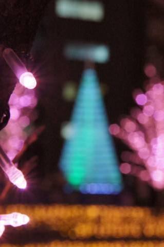 LED電球とクリスマスツリー