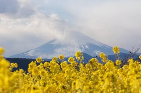 富士山頂かすかに