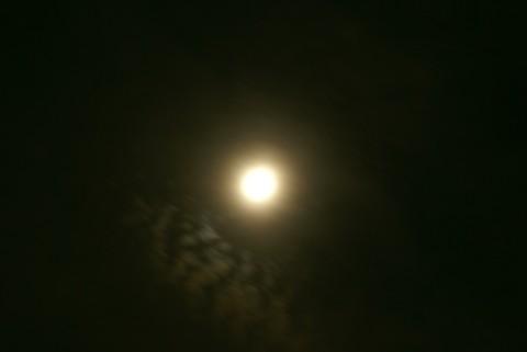 月とひつじ雲