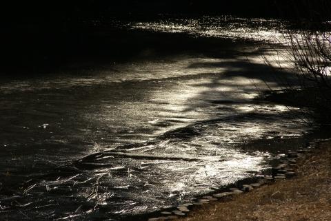 明治神宮南池の氷