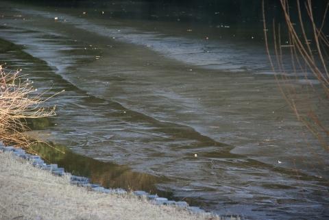 明治神宮の氷層