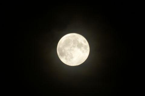 十五夜・満月