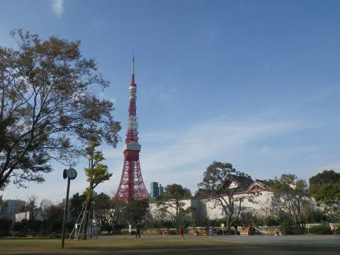 悠真撮影・東京タワー2