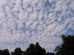 秋の柔らかな雲へ