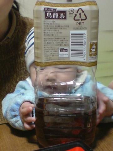 悠真とペットボトル2