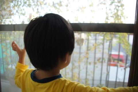 窓から消防車