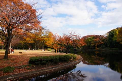 池に映る紅葉1