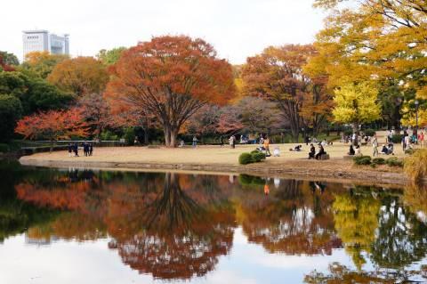 池に映る紅葉2