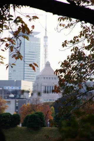 国会議事堂と東京タワー