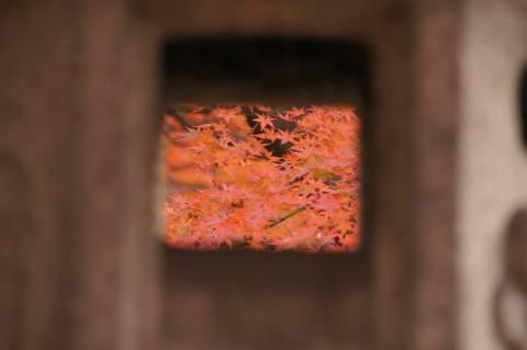 灯籠の向こうに見える紅葉