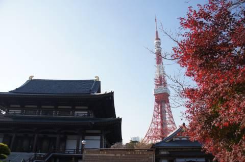 増上寺とモミジと東京タワー