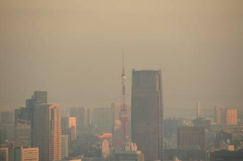 夕日に染まる東京タワー