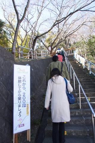 300段の階段