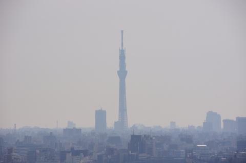 北とぴあから東京スカイツリー