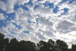 太陽も眩しいし空も青い、何より白い雲!