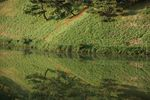 青空だけじゃなく赤も緑も水中の世界