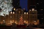 シャトー広場にツリーが立てられ木々もライトアップ