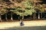 長閑な公園の1コマ。妹が妊娠したので余計に小さい子供が愛おしく思えます。