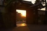 射掛ける夕陽と門のせめぎ合い