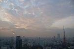 初冬の夕暮れ空の東京タワー。空もタワーも息が合ってる