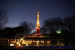東京プリンスホテルレストランビラの灯りと東京タワー