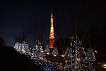 東京プリンスの光の回廊から見た東京タワー
