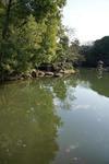 玉藻池の中の青空と流れる雲