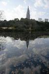 池に映る空と雲とDocomoタワー