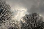 この通り、雲の合間に青空が見えたりという空でした