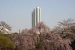 すぐそばに東京ドームホテルがそびえる小石川後楽園