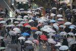 色とりどりの傘と思ったら白いビニール傘が多いですね。