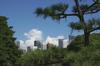 借景庭園風に入道雲を飾ってみました