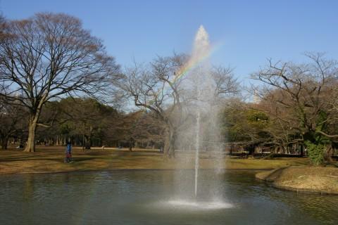 噴水の虹2