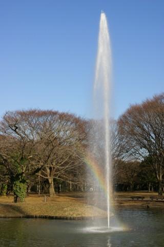 噴水の虹5