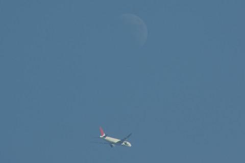 上弦の月とJAL機