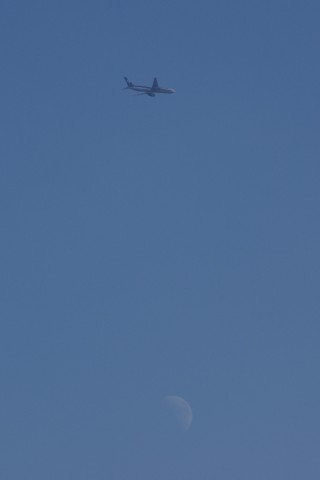 月の上を飛ぶANA機