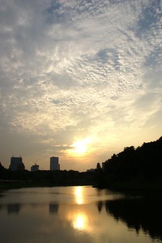 桜田濠の夕陽