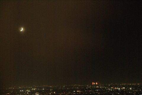 都庁から花火見物