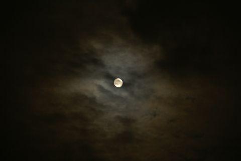 名月の光環