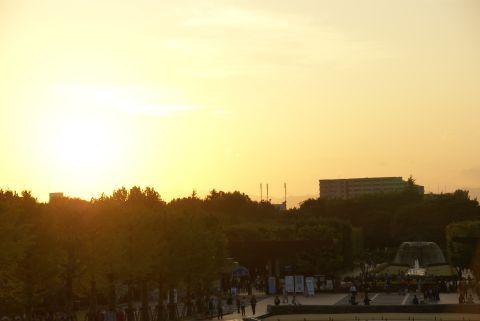 昭和記念公園の夕日