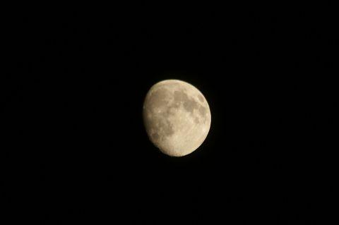 十三夜・後の月