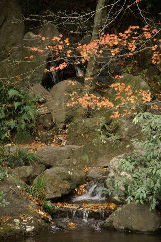 池田山公園の美