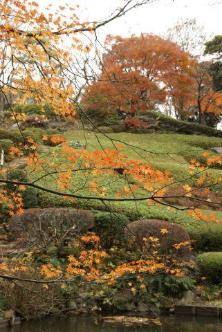 池田山公園の高低差