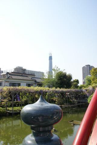 太鼓橋と東京スカイツリー