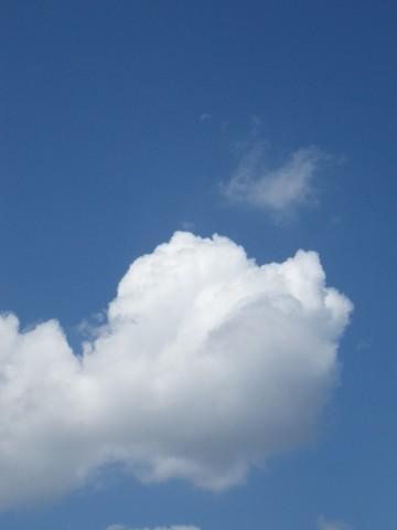 月と筋斗雲
