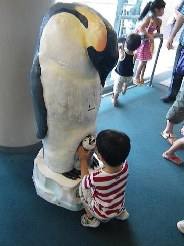 ペンギンの像と悠真