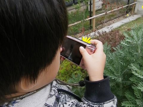 花を撮る悠真
