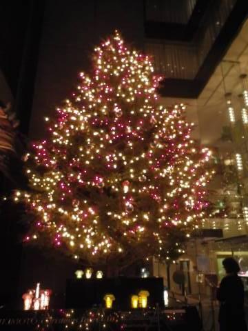 ミキモトのジャンボクリスマスツリー